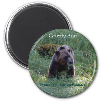 GRIZZLY BEAR & Riverbank Nature Magnet