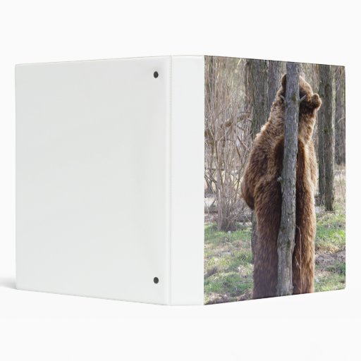 Grizzly Bear Scratching an Itch Vinyl Binders