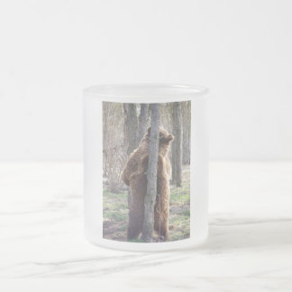 Grizzly Bear Scratching an Itch Frosted Glass Coffee Mug