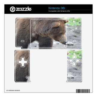 Grizzly Bear DSi Skins