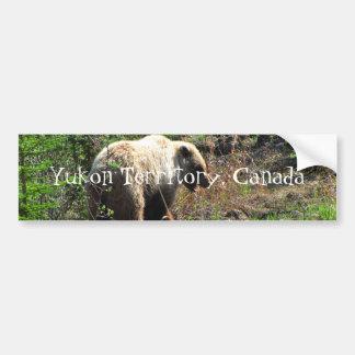 Grizzly Bear Smile; Yukon Territory, Canada Bumper Sticker