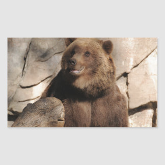 Grizzly Bear Sow Rectangular Stickers