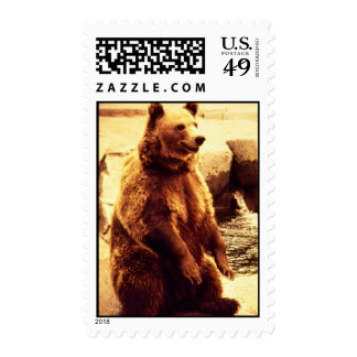grizzly bear stamp