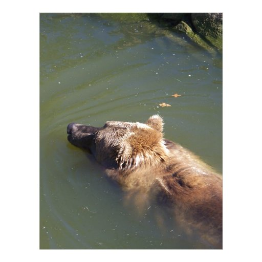 Grizzly Bear Swimming Personalized Letterhead