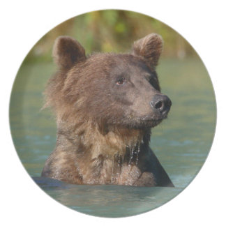grizzly bear swimming party plate