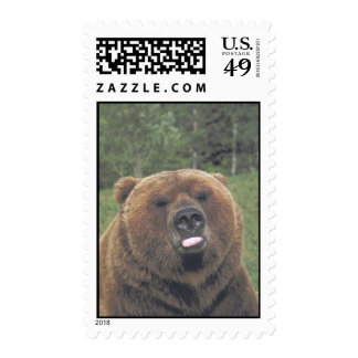 Grizzly Bear Tongue Postage