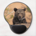 Grizzly bear (Ursus arctos horribilis) Gel Mouse Pad