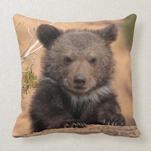 Grizzly bear (Ursus arctos horribilis) Throw Pillows