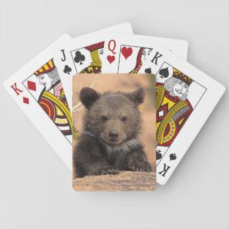Grizzly bear (Ursus arctos horribilis) Playing Cards