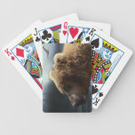 Grizzly Bear Wildlife Designer Pack Playing Cards