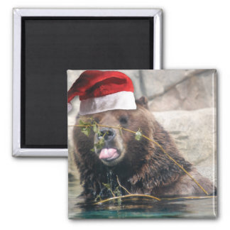 Grizzly Bear with Santa Hat 2 Inch Square Magnet