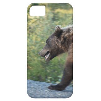 Grizzly bear Yukon, Canada mugs, totes, t-shirts iPhone SE/5/5s Case