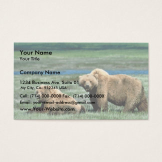 Grizzly Bears Business Card