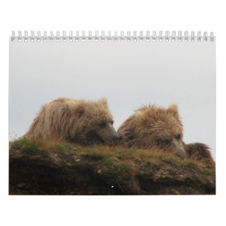 Grizzly Bears Calendar