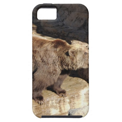 Grizzly Bears iPhone 5 Case