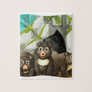 Grizzly bears living in the cave puzzles