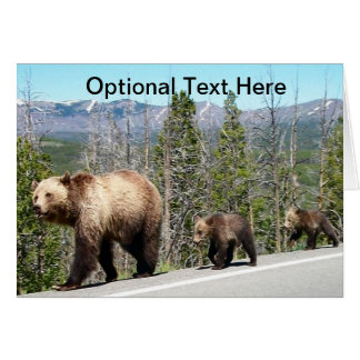 Grizzly Bears of Yellowstone Card
