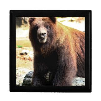 Grizzly Brown Bear Wildlife Photo Keepsake Box