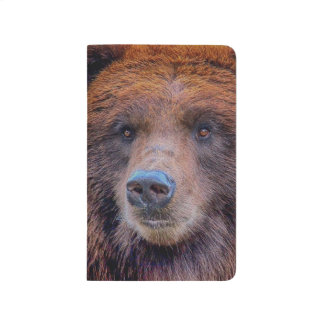 Grizzly Brown Bear Wildlife Photo Journals