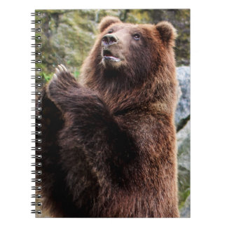 Grizzly Brown Bear Wildlife Photo Spiral Notebook