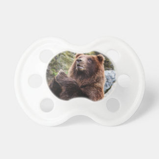 Grizzly Brown Bear Wildlife Photo Baby Pacifiers