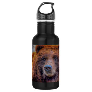 Grizzly Brown Bear Wildlife Photo Stainless Steel Water Bottle