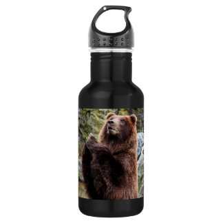 Grizzly Brown Bear Wildlife Photo Water Bottle