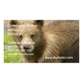 Grizzly Cub Business Cards