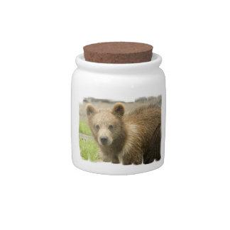 Grizzly Cub Candy Jar