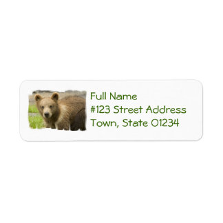 Grizzly Cub Mailing Labels