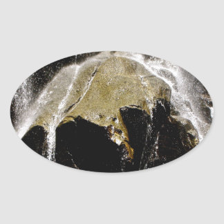 GRIZZLY FALLS DETAIL OVAL STICKER