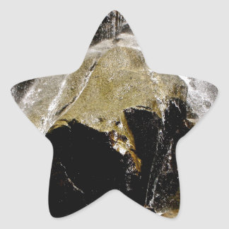 GRIZZLY FALLS DETAIL STAR STICKER