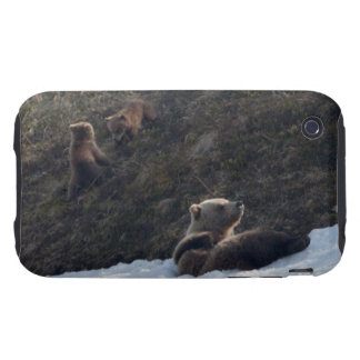 Grizzly Family Scene iPhone 3 Tough Case