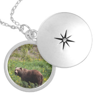 Grizzly in the Dandelions Round Locket Necklace
