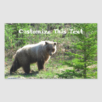 Grizzly in the Forest; Customizable Stickers