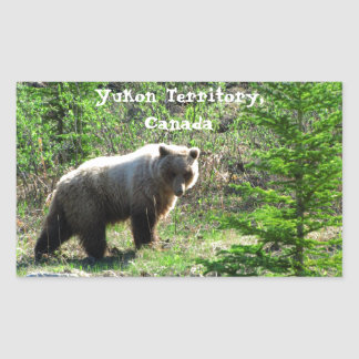 Grizzly in the Forest; Yukon Territory Souvenir Rectangular Sticker