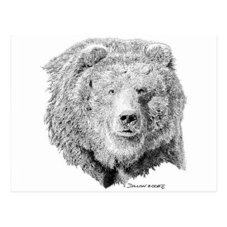 Grizzy Bear Postcard