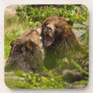 Grizzy lleva la lucha del juego posavaso