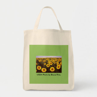 Grocery Bag / Sunflowers in Fargo North Dakota.