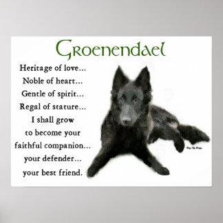 Groenendael Belgian Sheepdog Gifts Poster