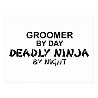 Groomer Deadly Ninja by Night Postcard