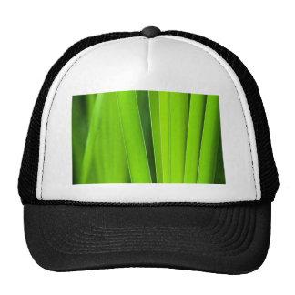 grooming green trucker hat
