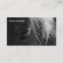 Grooming Horse Business Card