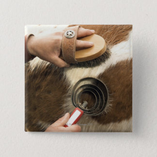 Grooming horse button