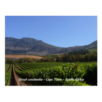Groot Constantia - Cape Town - South Africa Postcard