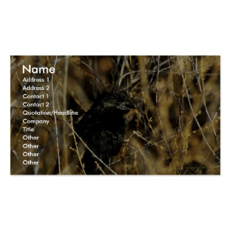 Groove-billed ani business card templates