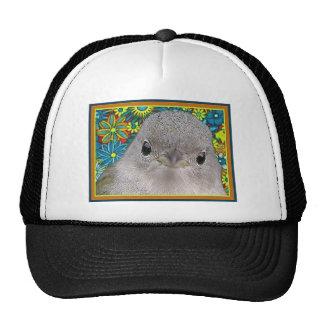 Groovy Bird Trucker Hat