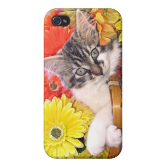 Groovy Thanksgiving Kitty Cat in Flowers ~ Kitten iPhone 4/4S Cover