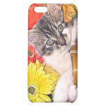 Groovy Thanksgiving Kitty Cat in Flowers ~ Kitten iPhone 5C Cases