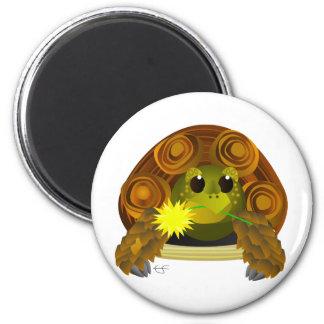 Groovy Tortoise Fridge Magnet